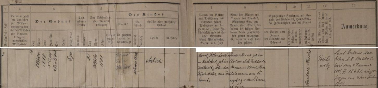 """Podle tohoto záznamu karlovarské židovské matriky, zaneseného do ní až v únoru 1891, narodil se v Karlových Varech čp. 105 14. října roku 1888 a byl týden nato i obřezán a dáno mu jméno Bruno - chlapcův otec Moritz Adler, obchodní příručí (zde """"Commis"""") v Karlových Varech, narozený v Pochlovicích (dnes jsou Horní i Dolní Pochlovice jen částí města Kynšperk nad Ohří), byl (nemanželským) synem Rosie Adlerové z Pochlovic, novorozencova matka Teresia, narozená v Chodově (Chodau), byla dcerou Hermanna Hirsche, obchodníka z Kynšperka nad Ohří (Königsberg) a jeho ženy Libusse, roz. Löwové - prázdná zůstala rubrika pro jméno toho, kdo provedl chlapcovo obřezání"""