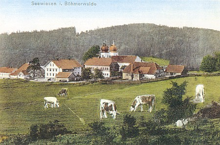 Javorná, pohlednice Josefa Seidela