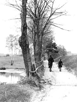 Dnes zarostlá cesta z Dolního Dvořiště knádraží v Certlově, jejíž snímek připojil kjedné ze svých zpráv v rodácké rubrice