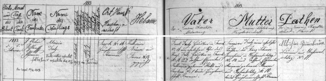 Záznam křestní matriky farní obce Svéraz o narození jeho matky s přípisem o její svatbě s Franzem Altem ve Svérazi roku 1908