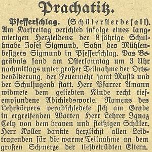 Zpráva v českubudějovickém německém listu o pohřbu Josefa Sigmunda zmiňuje jako řečníka kromě faráře Amanna i učitele Ignaze Celyho