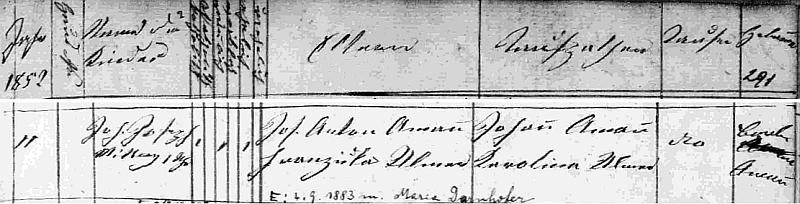 Záznam o jeho narození v křestní matrice farní obce Hohenems ve Vorarlbersku s přípisem o jeho svatbě v roce 1883 s Marií Darnhoferovou