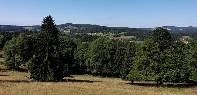 Výhled od rodných míst  do Bavorska, zmíněný v závěru vzpomínky Rosy Tahedlové