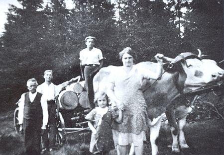 Odleva Josef Frisch, čeledíni Franz a Hans, Traudl Gerardová a její matka s nákladem dřeva a volským potahem, jak je zachytil dobový snímek