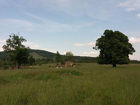 Jedna z ruin někdejší vsi Chlumany
