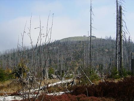 Za Luzným lesy samý třpyt... (stav v roce 2010)