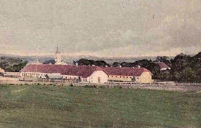 Hřebčín v Hostouni na výřezu pohlednice z roku 1926