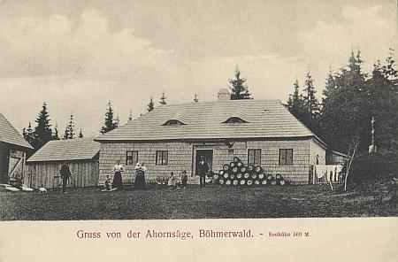 Ještě jedna pohlednice z Javoří Pily i s udáním nadmořské výšky 560 m - zajímavéjsou ovšem isložené sudy, byl tu provozován výčep pivasubytováním
