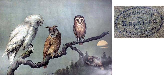 Naučný obraz, který byl používán při výuce ve škole v Kapličkách, se dochoval v bývalé školní budově v Přední Výtoni
