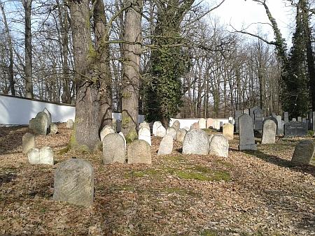 Židovský hřbitov v Hluboké nad Vltavou...