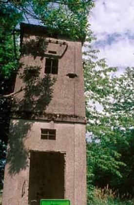 Jen ruina trafostanice upomíná vmístech, kde stávala Mysliv, ves se76 domy a 256 obyvateli