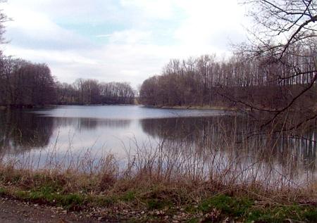 Myslivský rybník na snímku z roku 2012