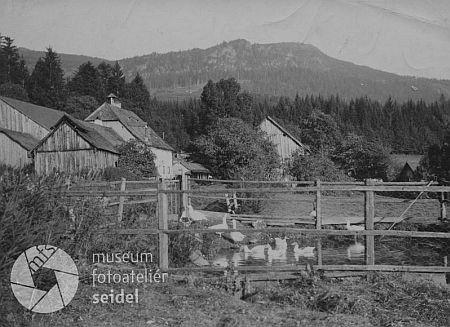 Zwieslerwaldhaus s Falkensteinem v pozadí na pohlednici Josefa Seidela