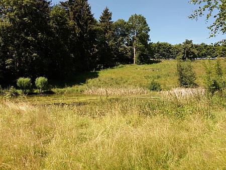 Někdejší střed obce Bučí a základy nejjižnějšího statku u silnice na Světlík