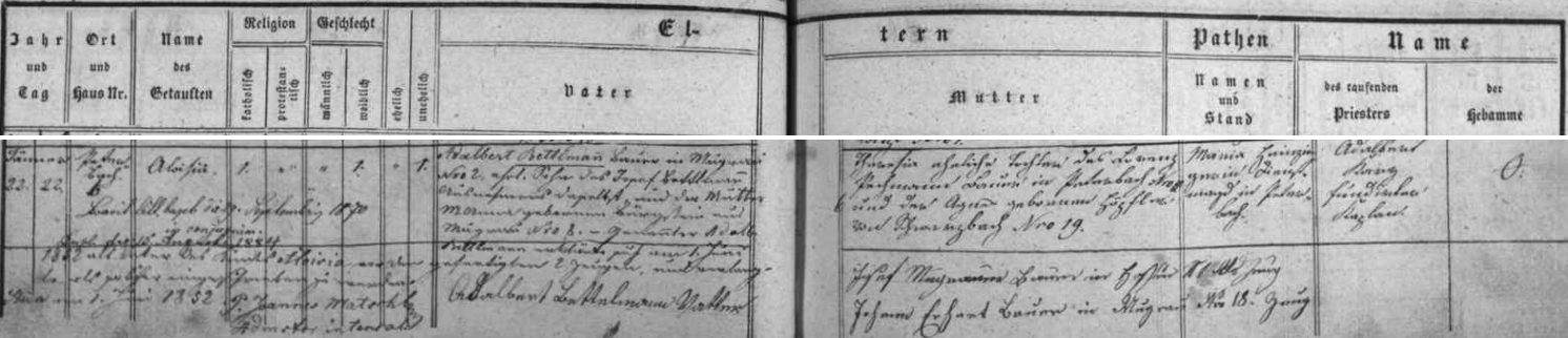 22. ledna roku 1852 se podle tohoto záznamu křestní matriky farní obce Polná na Šumavě narodilo v Petrově (Peterbach) čp. 6 děvče, pokřtěné téhož dne kaplanem Adalbertem Kurzem jménem Aloisia - jako otec dítěte se až 1.června téhož roku i vlastnoručním podpisem prohlásil sedlák ze vsi Mokrá (Mugrau) čp. 2 Adalbert Bettlmann, syn výminkáře na témže stavení Josefa Bettlmanna a jeho ženy Marie Anny, roz. Bürgsteinové z Mokré čp. 8, nemanželskou matkou Aloisiinou byla Theresia, manželská dcera rolníka v Petrově čp. 6 Laurenze Pechmanna aAgnes, roz. Höpflerové z Černé v Pošumaví (Schwarzbach) čp. 19 - kupodivu nijaký přípis nehovoří tu o svatbě Aloisie Bettlmannové s Josefem Dichtlem, jehož byla prvou ženou amatkou jeho dětí, než 24. ledna roku 1886 zemřela a čerstvý vdovec se už 8. března téhož roku oženil znovu