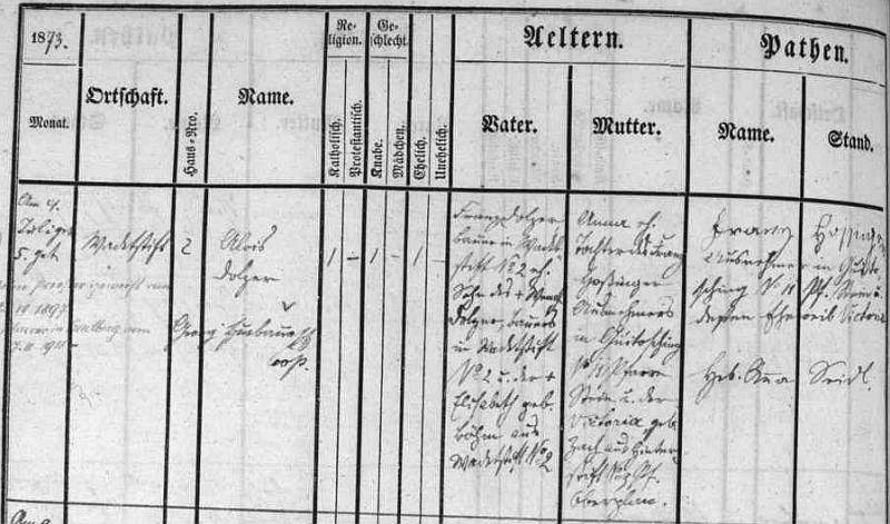 Narodil se podle záznamu matriky farní obce Frymburk jako Alois Dolzer v rodině rolníka v Hrušticích čp. 2 Franze Dolzera (jeho otec Wenzl Dolzer hospodařil na téže usedlosti se svou ženou Elisabeth, roz. Böhmovou) a jeho manželky Anny, dcery Franze Hossingera z Květušína čp. 11, jehož žena a Annina matka Victoria byla rozená Zachová z Další Lhoty (Hinterstift)