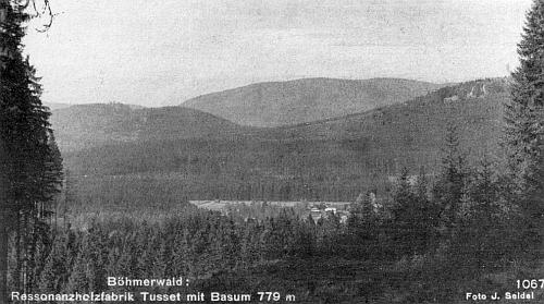 Pohlednice Josefa Seidela zachycuje stožeckou továrnu na zpracování rezonančního dřeva v pozadí se hřbetem hory Pažení (Basum)