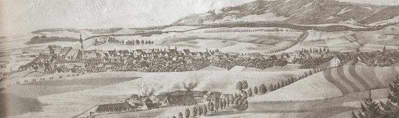 Rodné město (Planá u Mariánských Lázní) na staré litografii z roku 1852