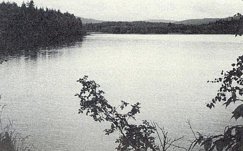 """Velký Klenský rybník, dříve zvaný """"Herrenteich"""", tj. """"Panský"""", na jejím snímku, pořízeném při pohledu směrem k jihu"""