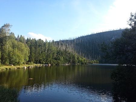 Plešné jezero v létě 2015