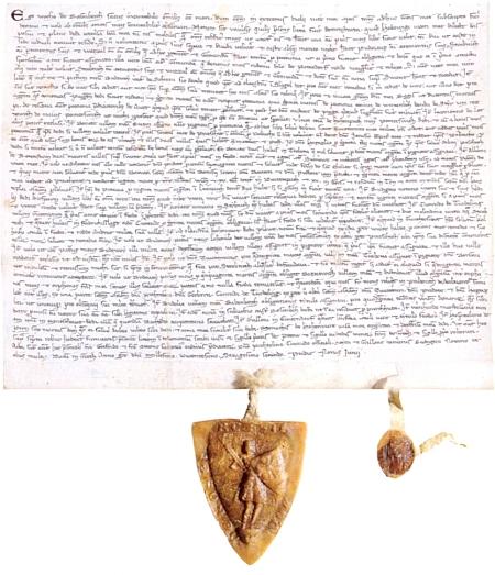 Závěť Voka I. z Rožmberka z roku 1262, o níž je v Enzigerově textu také řeč