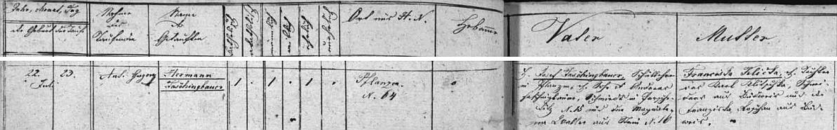 Záznam v matrice obce Blansko o jeho narození 22. července 1861 učiteli Josefu Faschingbauerovi, synu kováře Andrease Faschingbauera v Brzoticích a jeho ženě Františce, roz.Kličkové, dceři kováře z Budějovic