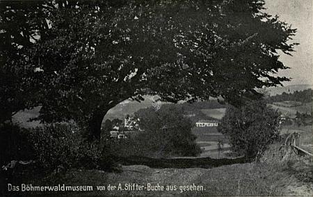 Pohled od Stifterova buku na Šumavské muzeum v Horní Plané (viz i Alois Meisetschläger)