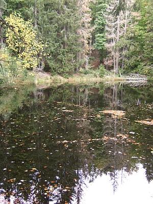 Lesní vodní zdrž Tišina při Medvědím potoce na snímku z podzimu roku 2007