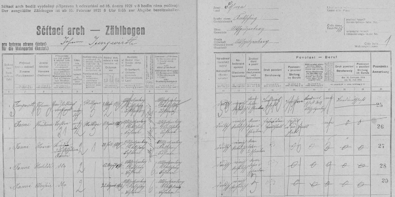 """Na tomto archu sčítání lidu z roku 1921 pro stavení ve Starém Špičáku  čp. 13, zvaném """"Hounsfeichtl"""", je jako sirotek po padlém Johannu Jannim uvedena i Erwinova matka Aloisie (*22. prosince roku 1913) spolu se sestrami Marií (*1909) a Matildou (*1911) a ovdovělou matkou Paulinou (*11. dubna 1885)"""
