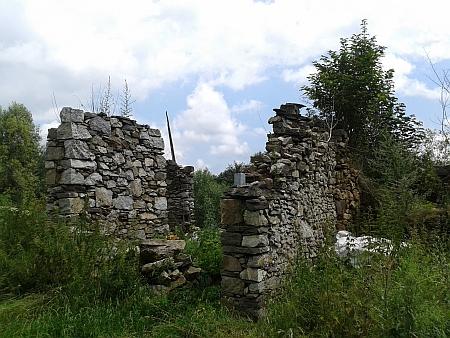 To, co zbylo z rodných Pasovar (ruiny statku poblíž zřícenin tvrze)