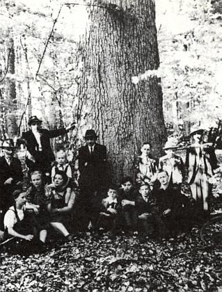 """Nedělní výlet rodiny Furtnerovy, Waldherrovy, Iraschkovy a Pascherovy do Žofínského pralesa na snímku, pořízeném před tzv. """"královskou jedlí"""" a zaslaném redakci zrodinného archivu paní Marií Hochreiterovou, roz. Iraschko"""