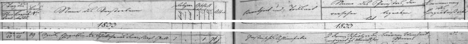 """Záznam úmrtní matriky farní obce Rychnov nad Malší o skonu jeho ženy Agnes na tzv. blaťáckou (polní) horečku (Schlammfieber, dnešní terminologií leptospiróza), zde označenou jako """"žaludeční"""" polní horečka (Gastrische Schlammfieber)"""