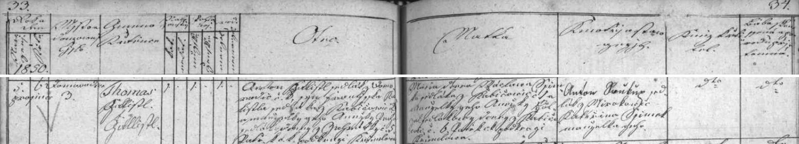"""Česky psaný záznam zlatokorunské křestní matriky vypovídá o jeho narození v Domoradicích 5. prosince roku 1850 akřtu den nato ve Zlaté Koruně - otcem novorozence byl Anton Gallistl, sedlák z Domoradic čp. 3, syn sedláka zChabičovic (zde """"Kabičowic"""") čp. 2 Františka Gallistla a jeho manželky Anežky Pecho, sedlákovy dcery zeZahrádky čp. 5, """"patřící k c.k. podkraji Krumlowu"""", chlapcova matka Maria byla dcerou sedláka z Chabičovic čp.1 Wáclawa Šimka a jeho ženy Anežky Hölzelové, sedlákovy dcery z Chabičovic čp. 6 - kmotry byli """"Anton Saukup, sedlák zMirkovic, a Kateřina Šimek, manželka jeho"""""""
