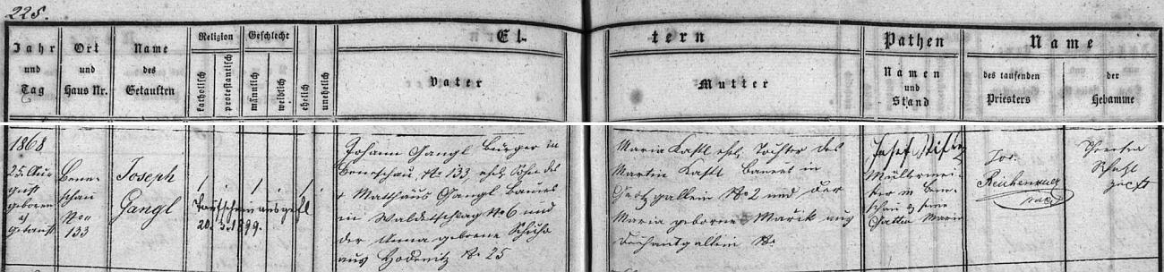 Záznam z matriky farní obce Německý Benešov svědčí i o původu otcově z Valtéřova (chlapcova babička z otcovy strany byla z Hodonic), matčině pak z Velkých Skalin (chlapcova babička z matčiny strany byla zase z Děkanských Skalin)