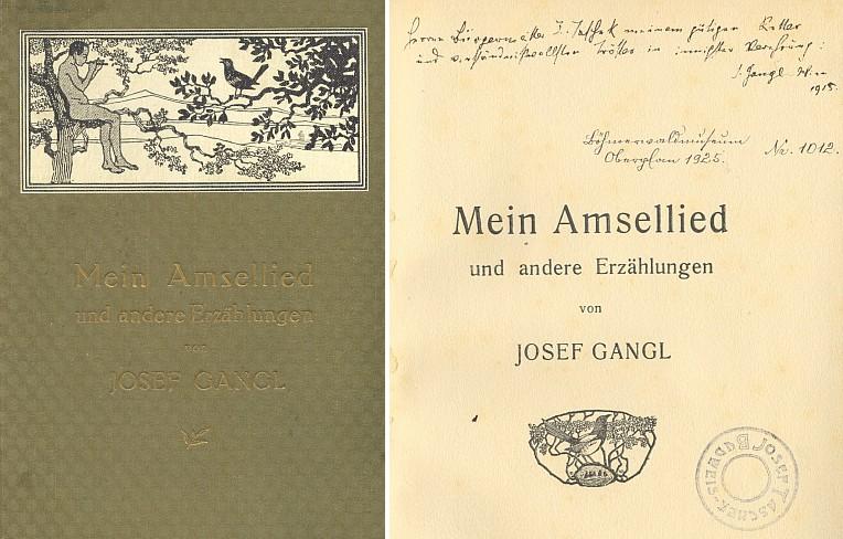 Obálka a titulní list Ganglovy knihy s věnováním Josefu Taschekovi z roku 1915 i s Taschekovým razítkem