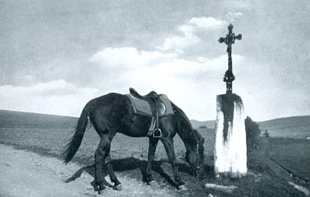 """Na tomto snímku z nacistické propagační publikace se pase kůň wehrmachtu v říjnu roku 1938 u osamělého kříže poblíž """"Milau"""" nedaleko Kašperských Hor"""