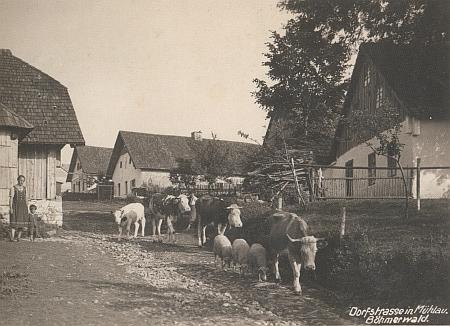 """Pohlednice z Milova, vpravo dům čp. 11, řečený """"Kretzer"""", kde se narodil"""