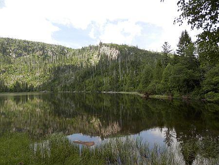 Plešné jezero v roce 2015