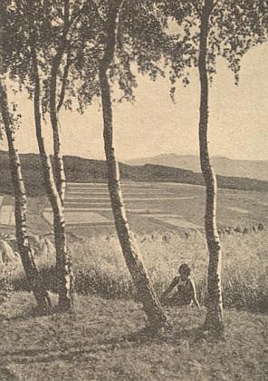 Pohled od Dešenic na horu Ostrý