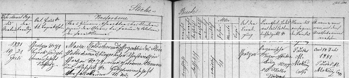 Záznam novohradské úmrtní matriky o skonu jeho první ženy Anny Marie dne 19. července roku 1881 ve věku 48 let zřejmě na rakovinu žaludku (organische Magen-Entartung)