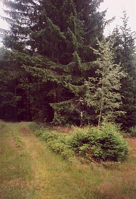 Dnešní Samoty na snímcích z července 2007