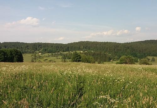 Pohled opačným směrem z roku 2021 - pod lesem jsou ruiny stavení zaniklého Račína, Zadní Bor stával více vlevo mimo záběr