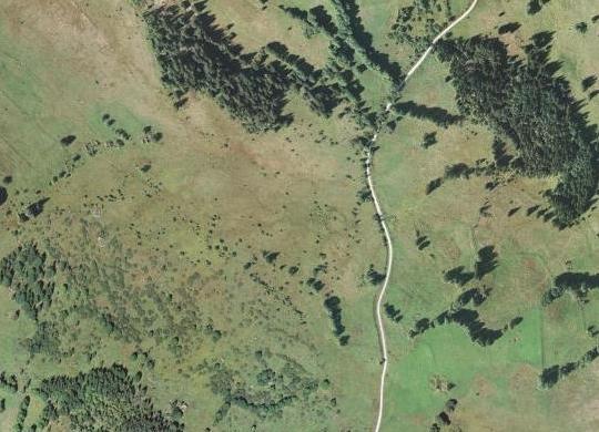 Letecké snímky Zadního Boru z let 1952 a 2007