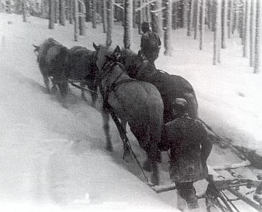 Jeho snímky ze zimního svážení dřeva v šumavských lesích daroval redakci krajanského šumavského kalendáře Ingomar Heidler