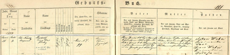 Podle tohoto záznamu stříbrské křestní matriky spatřil světlo světa ve Stříbře čp. 99 a byl 4. července téhož roku vkostele Všech svatých kooperátorem Johannem Nedvědem i pokřtěn na jméno Rudolf Franz Sales Prokop Haas - otcem dítěte byl c.k. adjunkt zdejšího okresního soudu Theodor Haas, syn Jakoba Haase, c.k. vozmistra zhornorakouského městyse Frankenmarkt, a jeho ženy Theresie, roz. Fottingerové, matkou dítěte pak byla Antonia, roz. Weberová, dcera pivovarnického mistra v Podbořanech (Podersam) Franze Webera, kterého zde vidíme podepsaného i jako jednoho z novorozencových kmotrů, a jeho manželky Marie, roz. Höferové, dcery mistra mlynářského - pozdější přípis k záznamu zpravuje nás i o skonu Rudolfa Haase v rakouském Villachu dne 25. srpna válečného roku 1943