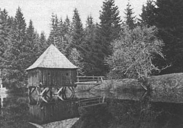 Rybník Kapelunk...
