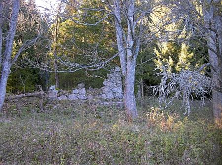 Zaniklá hájovna při vsi Janovy Hutě, ještě v letech 1958-1959 obývaná hajným Veselkou