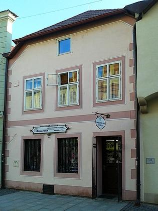 Dům v Široké ulici byl původním působištěm firmy Stegmann (na snímku z roku 1900 druhý zprava  vývěsním štítem Joh. Stegmann Soehne) - zde se narodil v roce 1896 otec Margarethe Hampelové