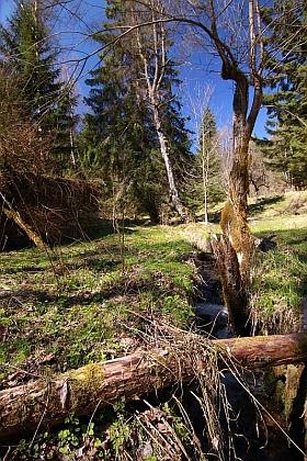 Pěkný potok (Wunderbach) hned vedle někdejšího Harantů mlýna