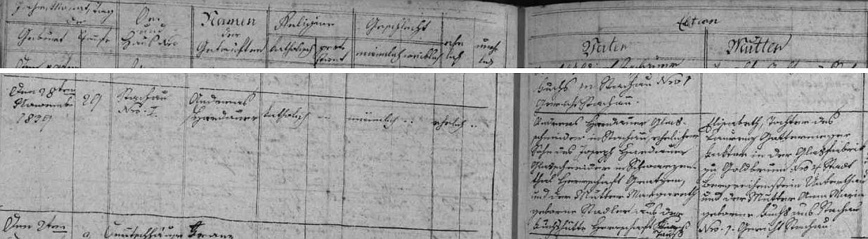 Narodil se podle záznamu v křestní matrice obce Stachy (vedené tehdy jen německy) 28. listopadu 1839 (den nato byl pak pokřtěn) na čp. 1 v rodině řezače skla Andrease Hardauera (i příjmení novorozencovo je tu psáno Hardauer), jehož otec Joseph Hardauer byl rovněž řezačem skla, a to v Černém Údolí u Nových Hradů (matka Margarethe, roz. Stadlerová, pocházela z Fuchsovy Huti, panství Domažlice), a jeho ženy Elisabeth, dcery Laurenze Gattermayera, faktora ve sklárně Zlatá Studna čp. 4 (Elisabethina matka Anna Maria byla roz. Fuchsová ze Stach čp. 1, rychta Stachy)
